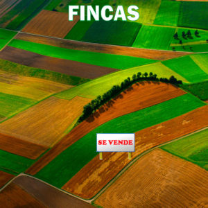 Fincas