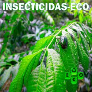 Insecticidas-eco