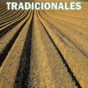 Tradicionales