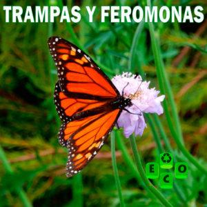Trampas y Feromonas