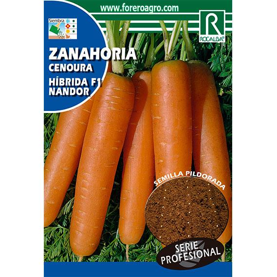 Zanahoria Hibrida F 1 Nandor Pildorada Foreroagro Se hacen varias siembras espaciándolas un mes, se conseguirá tener una aclarar varias veces hasta que las plantas queden a una distancia final de 8 cm entre una y otra, y arranca las zanahorias tan pronto como hayan. zanahoria hibrida f 1 nandor pildorada