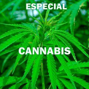 Especial Cannabis