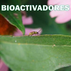Bioactivadores