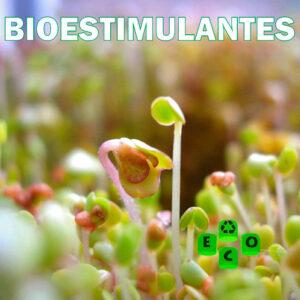Bioestimulantes-eco
