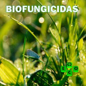 Biofungicidas-eco