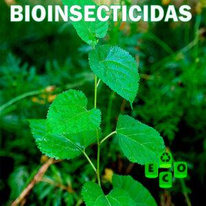 Bioinsecticidas-eco