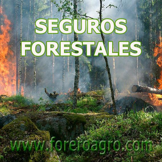 Seguros Forestales