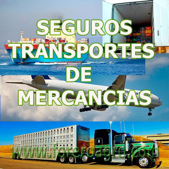 Seguro de Transporte de Mercancías