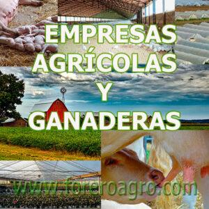 Seguros para Empresas Agrícolas y Ganaderas