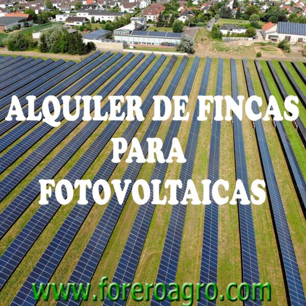 ALQUILER DE FINCAS PARA FOTOVOLTAICAS